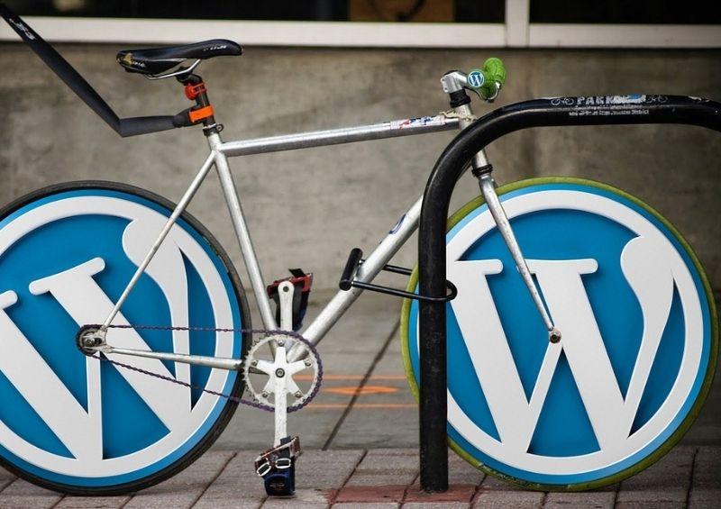 Corsi Azione Digitale - Wordpress logo corso